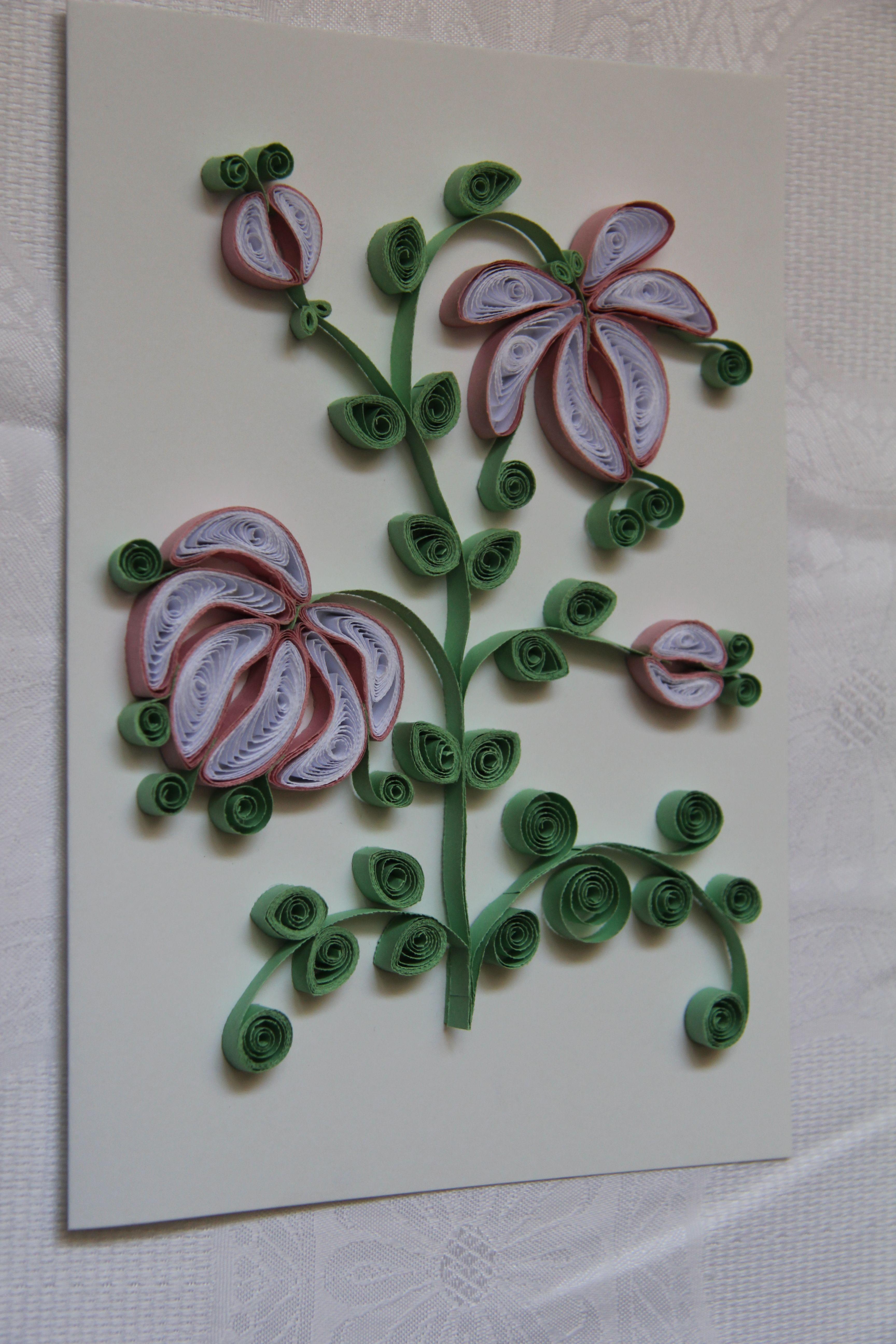 Kwiaty- biało-różowe.