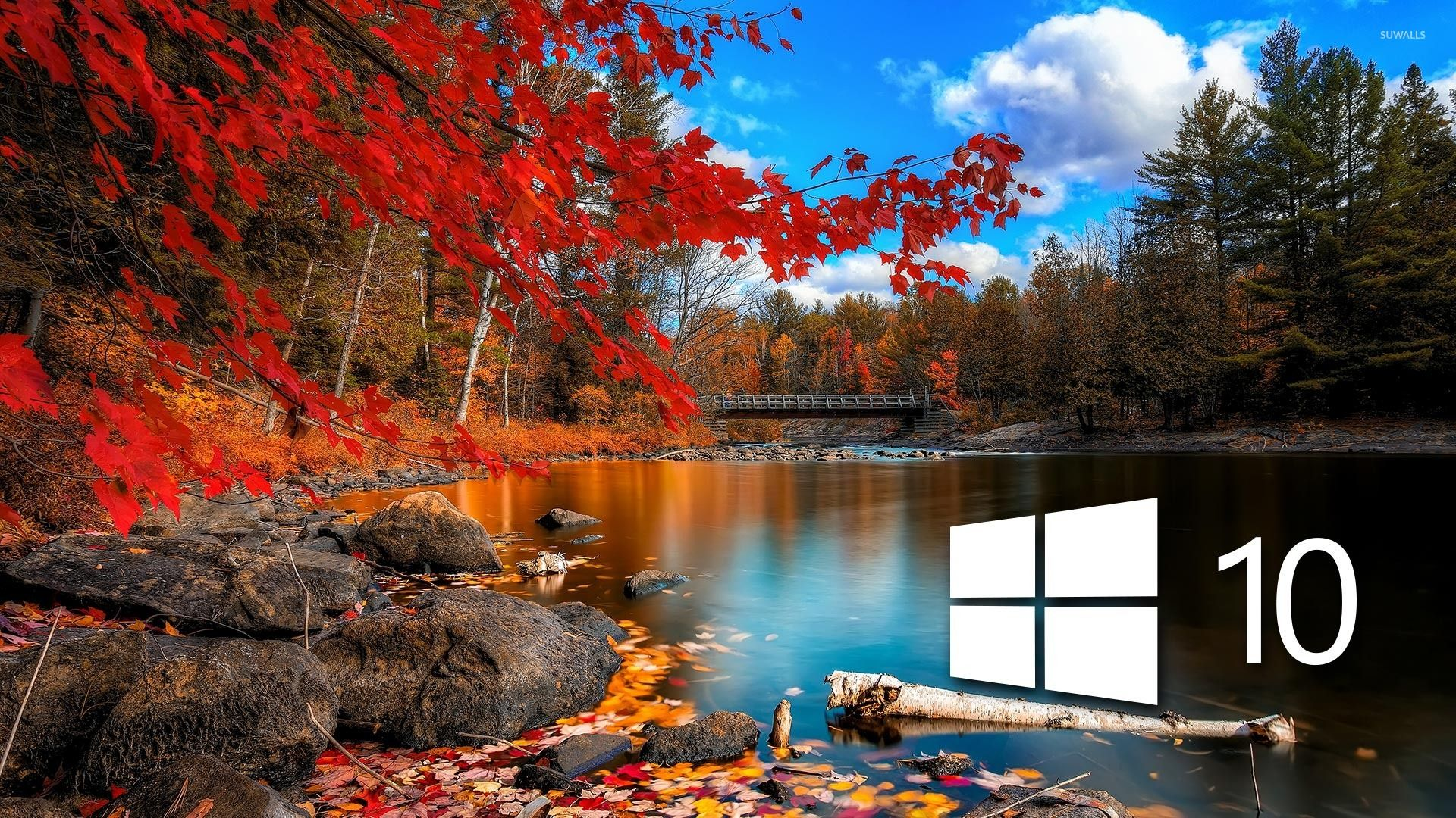 Find Out Window 10 Wallpapers Hd As Wallpaper Hd On Sotoak Com Iphone Android Wallpaper Window 10 In 2020 Autumn Scenery Nature Desktop Beautiful Nature