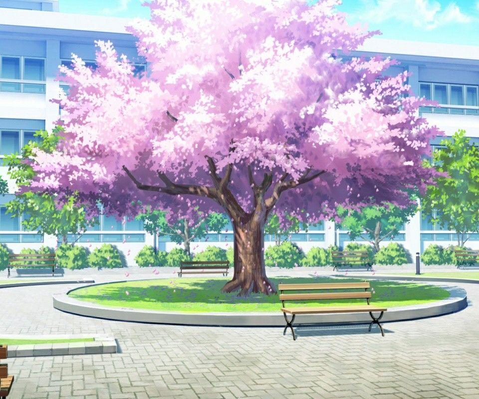 Sakura tree imagens) Cenário anime, Ilustração de