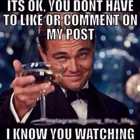 You Have No Advantage Over Me All You Can Do Is Watch Memes Funnymemes Haters Leonardo Dicaprio Funny Stalker Quotes Funny Quotes