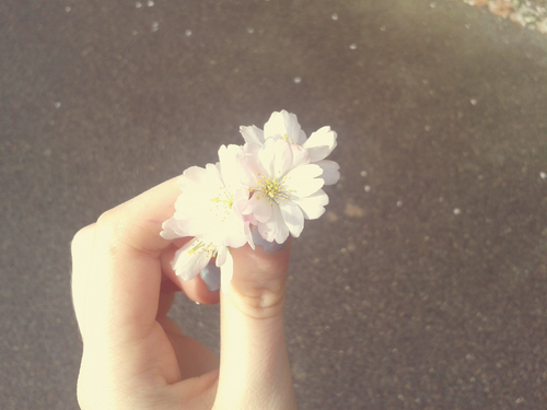 #spring #inspiration #cold #weather #happiness #nature #love #flower