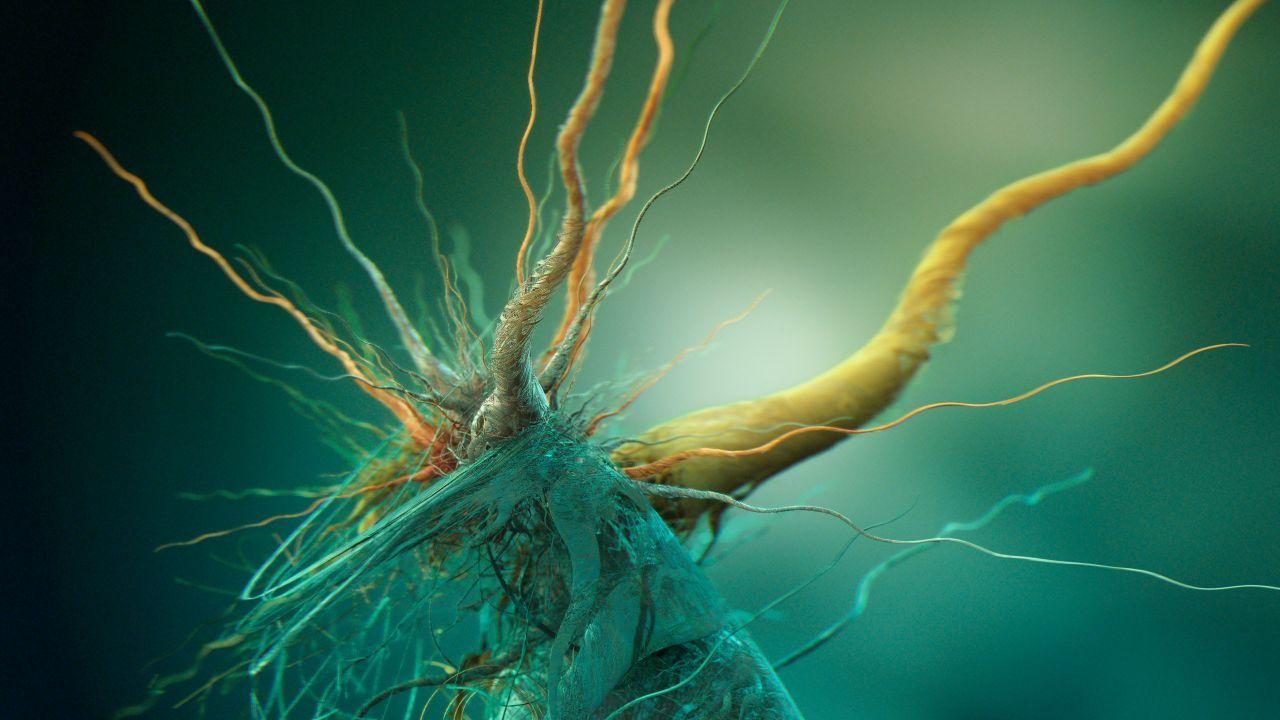 Abstract Bacteria 4k 5k Iphone Wallpaper Green Root