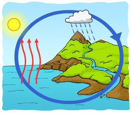 El Ciclo Del Agua Chimpon Creative Kids Art Middle School Science Experiments Water Cycle