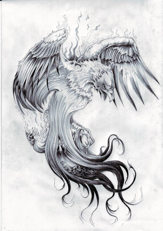 Картинки по запросу тату феникс   Татуировка феникс, Ворон ...
