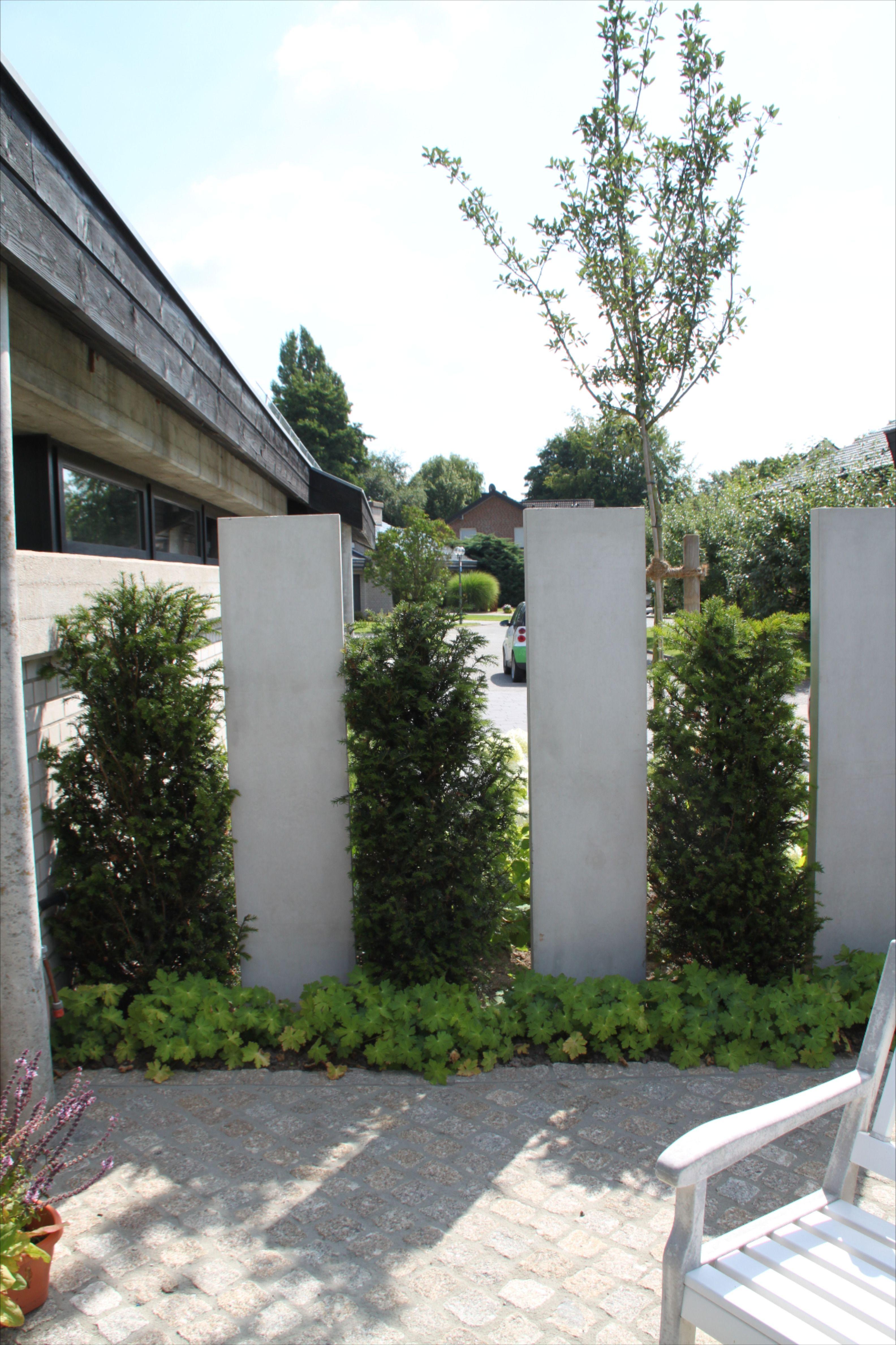 Heckenelemente Mit Sichtbeton Sichtschutzwand Garten Vorgarten Gestalten Garten Landschaftsbau