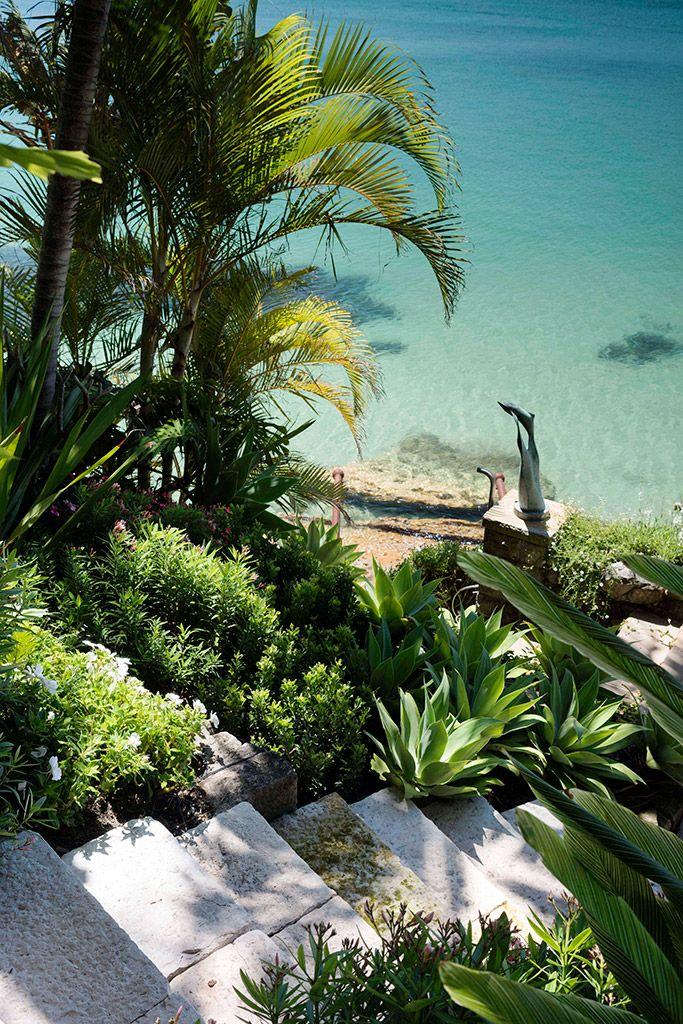 One Of A Kind, Mosman - Secret Gardens Landscape ...