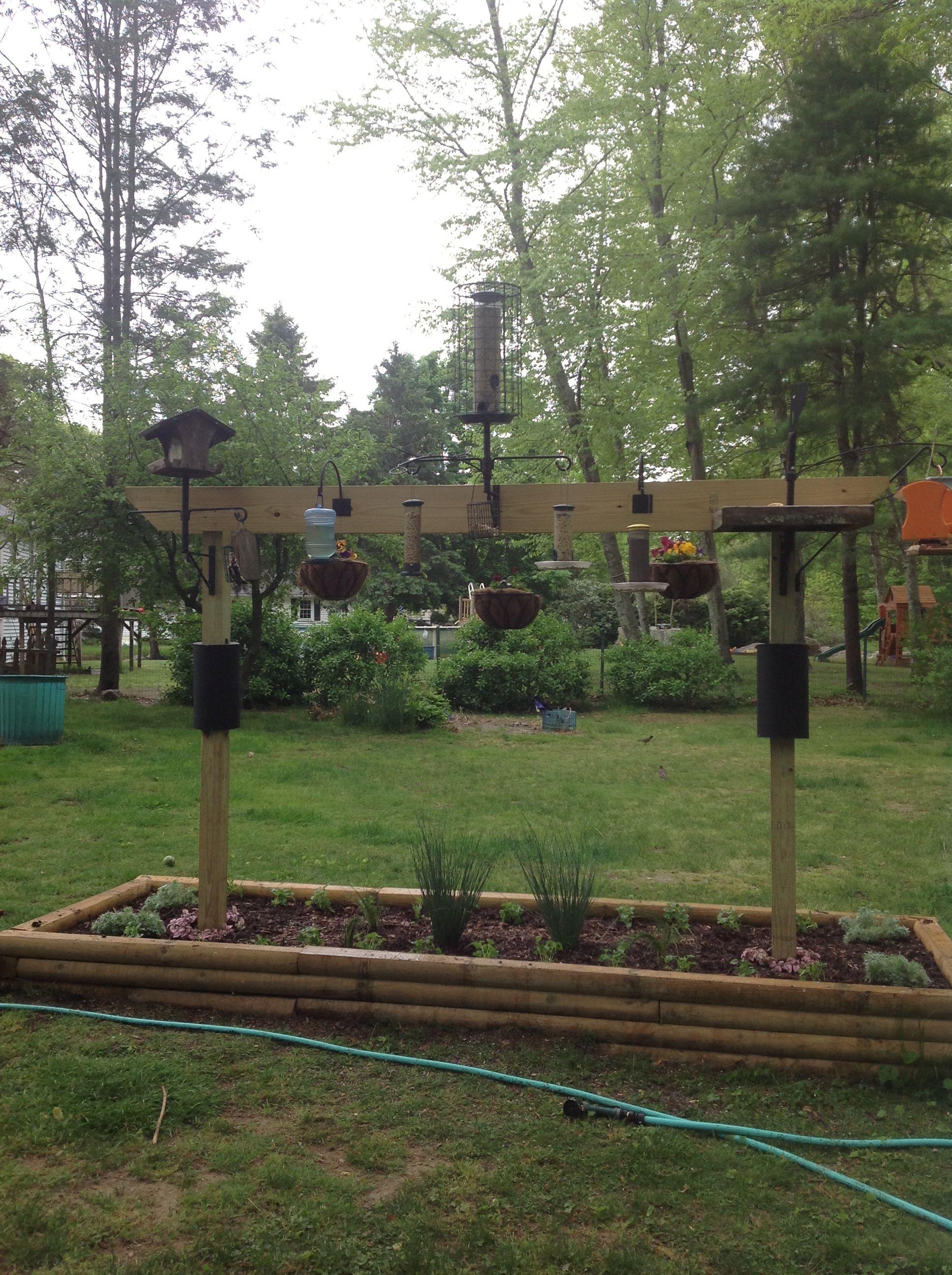 Pin By Rosanne Kulibaba On Garden Backyard Birds Sanctuary Bird Feeding Station Bird Feeder Station