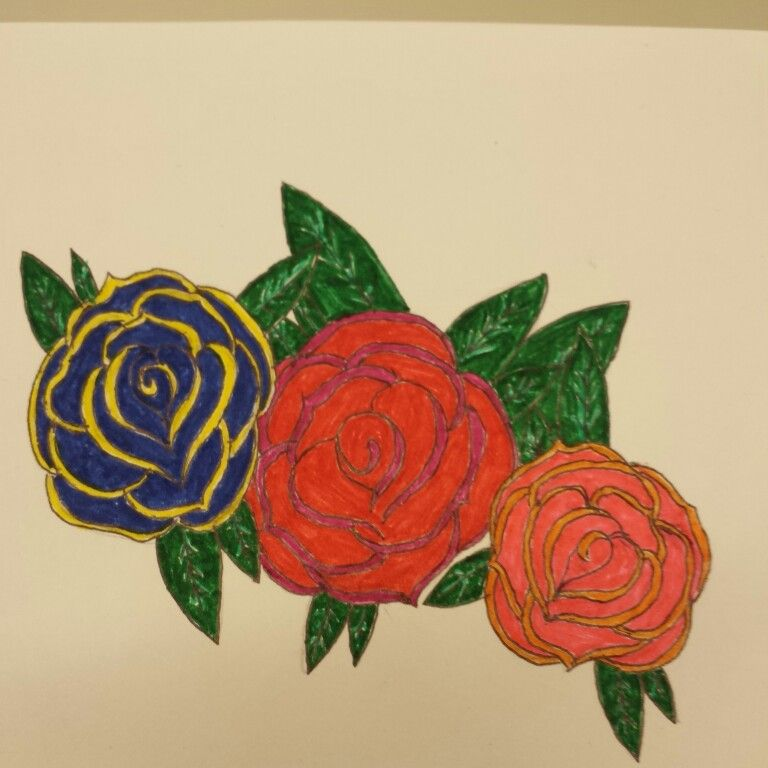Hopefully my next tattoo. Colourful roses, drawn by me
