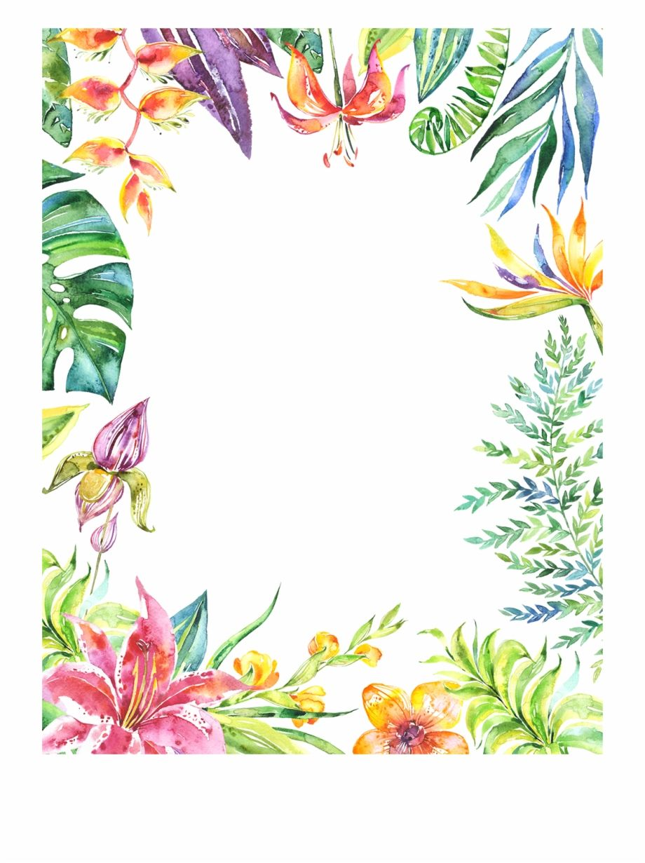 Tropical Flower Border Png Painted Watercolor Flower Watercolor Background Is Found On Pngtube Download Free Watercolor Flowers Flower Border Flower Drawing