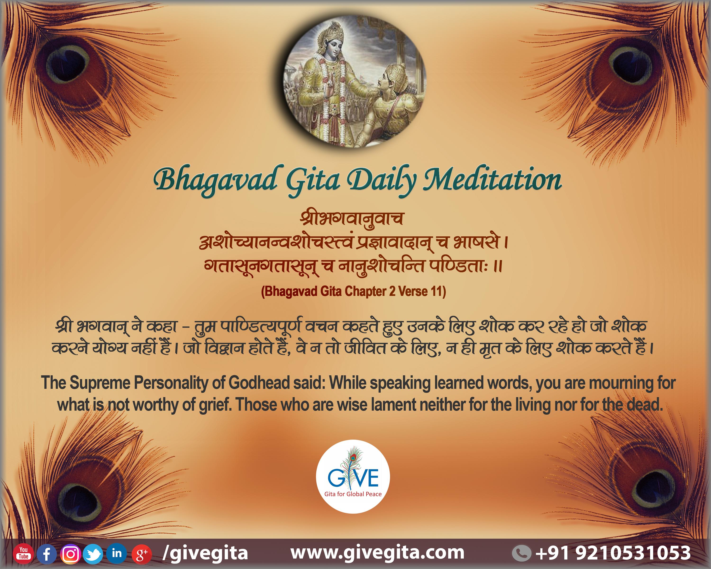 Bhagavad Gita Daily Meditation Chapter 2 Verse 11 Bhagavadgita Krishna Bhagavad Gita Daily Meditation Meditation