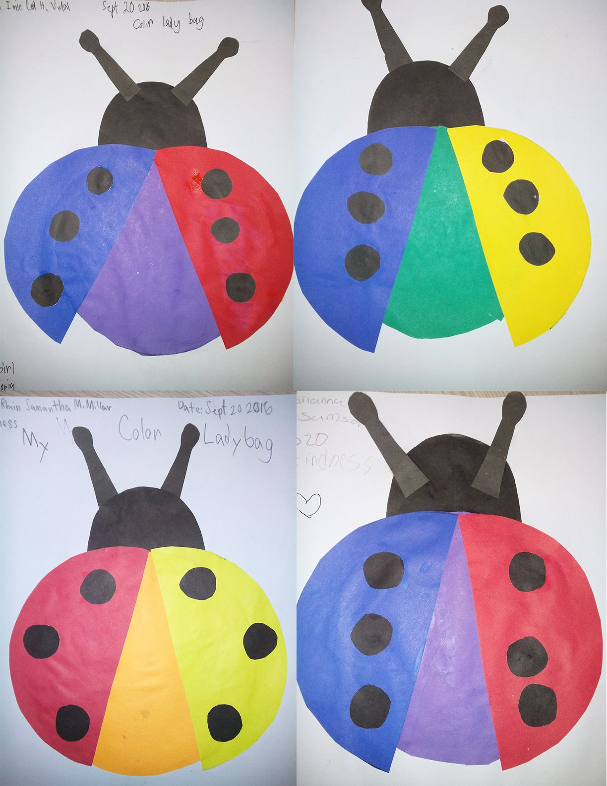 Color Ladybug Covers The Topic Primary And Secondary