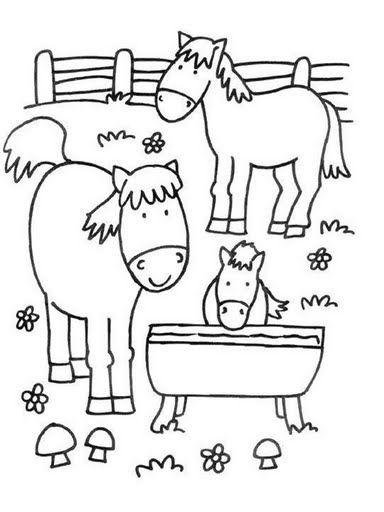 informacion del caballo para preescolar - Google Search | Pastora ...