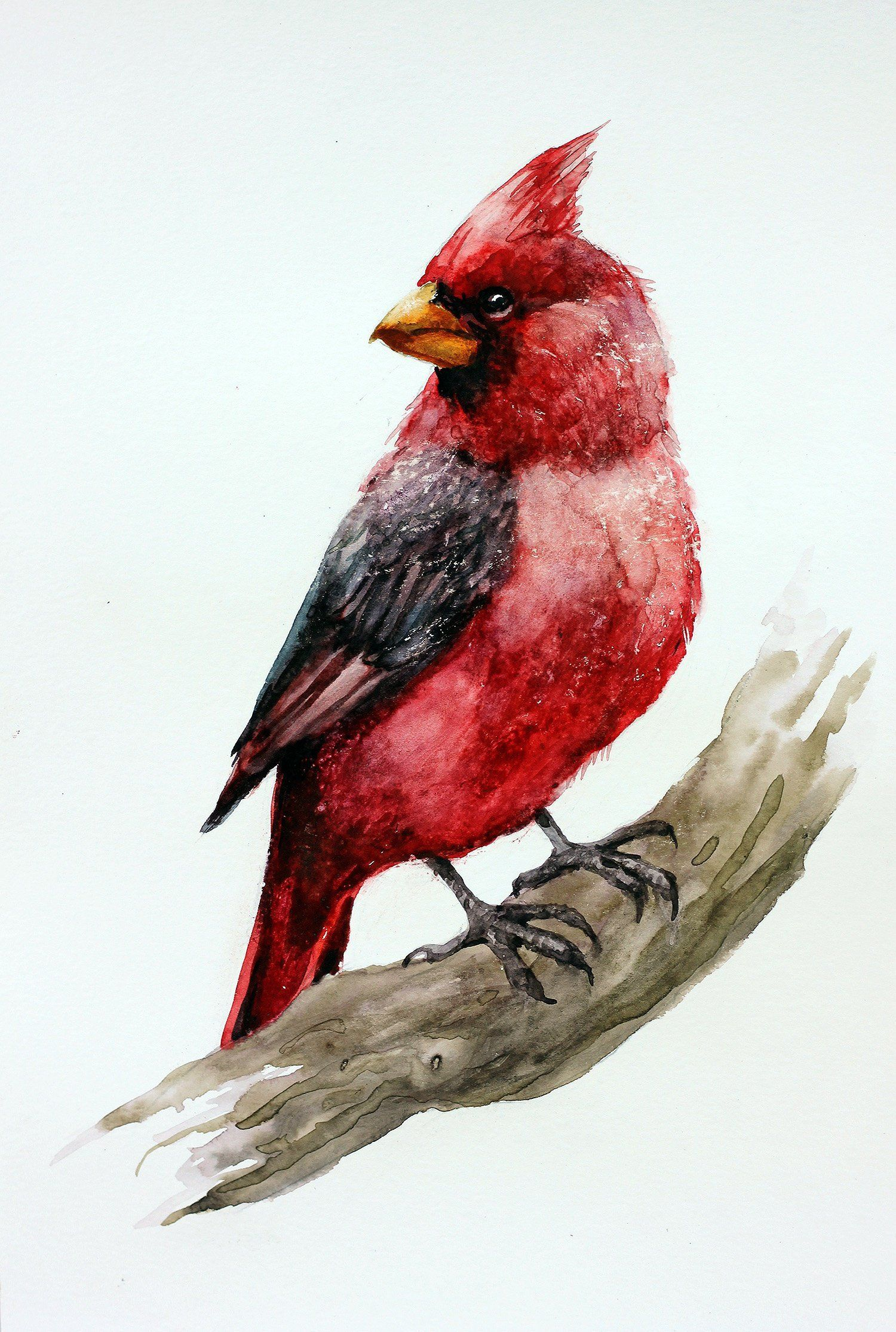 Red Cardinal Watercolor Original Painting Bird Aquarelle Decor