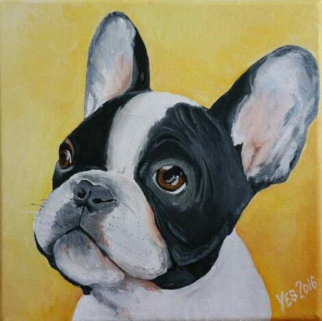 French bulldog 20x20 cm Acrylic on canvas