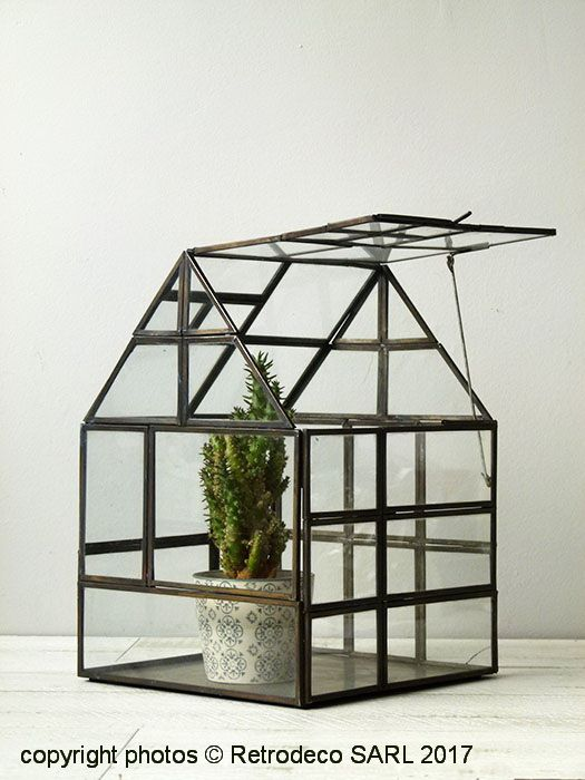 Mini Serre De Jardin Ou Terrarium Verre Et Metal Laiton Mini