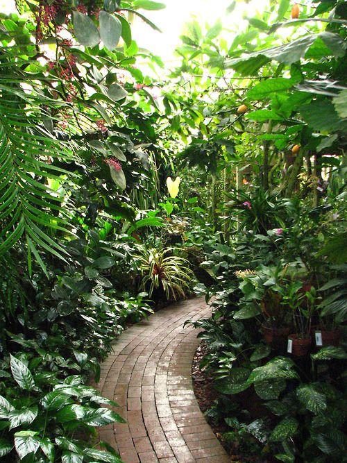 Mary Selby Botanical Gardens In Sarasota Via Tumblr