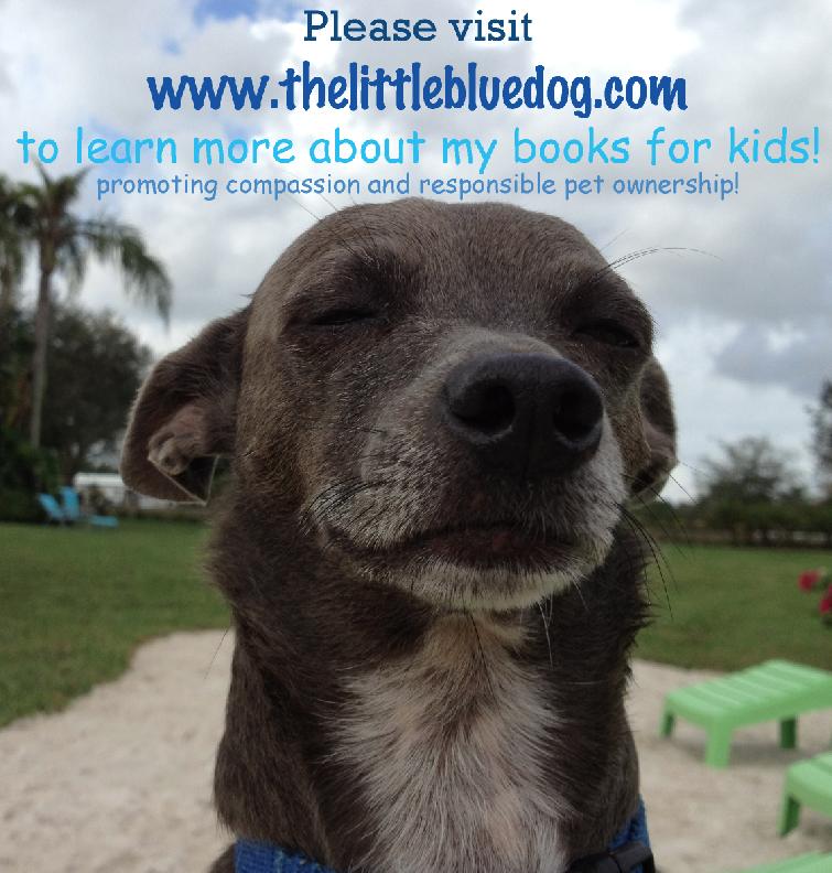 Www Thelittlebluedog Com Blue Dog Veterinary Hospital Pet Ownership