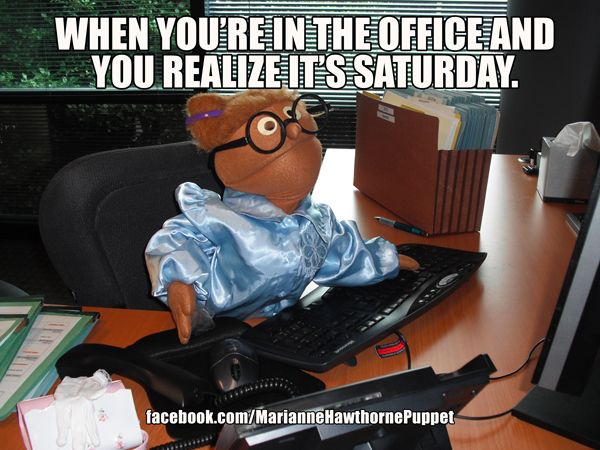 Funny Cartoon Office Meme : When you're in the office and you realize it's saturday. office work