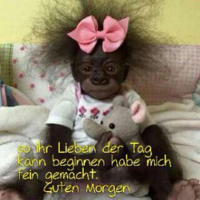 Pin Von Myriam Breger Auf To Laugh Lustige Guten Morgen