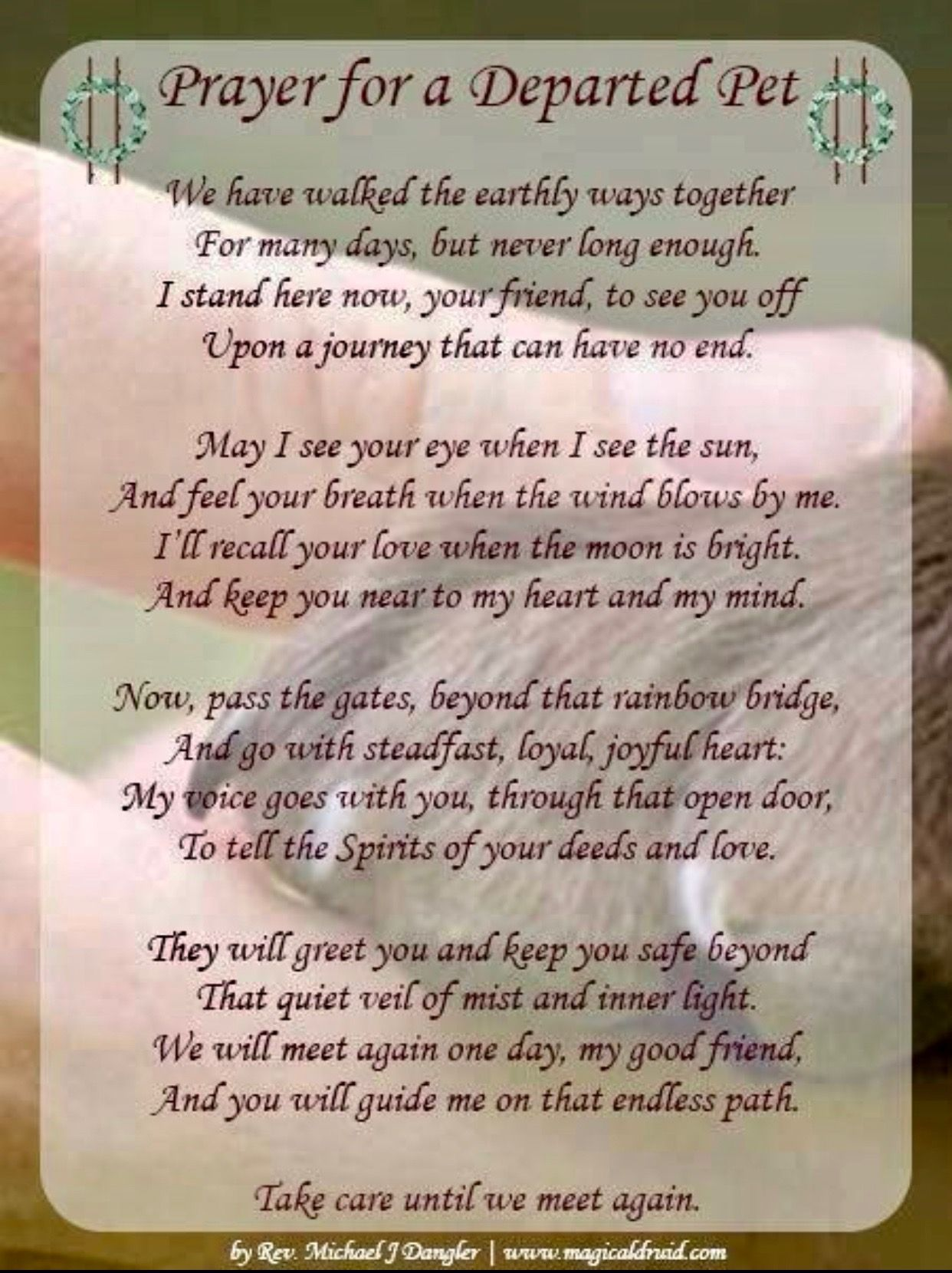 Pin by Paula Pogulis on Paws Dog poems, Pet loss grief