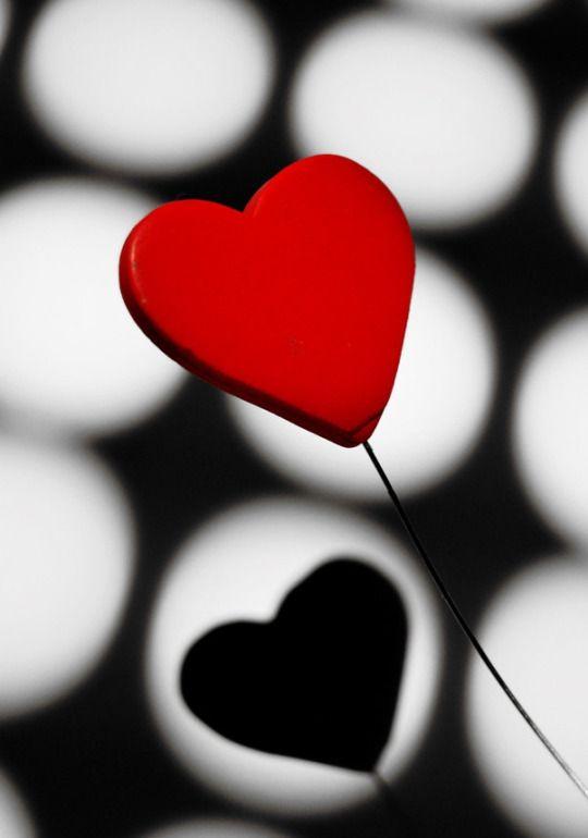 Resplend3nt Rap4cious Heart Wallpaper Black And White Heart Red Heart