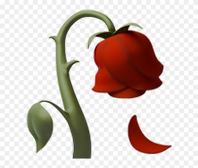 Sticker By Naomi1368 Imagenes De Emojis Emojis De Iphone Emojis Dibujos