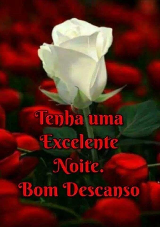Pin De Raimunda Em Boa Noite Jardim De Rosas Rosas Brancas