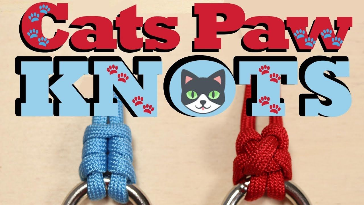 YouTube Videos image by Paracord Cat paws, Knots, Paw