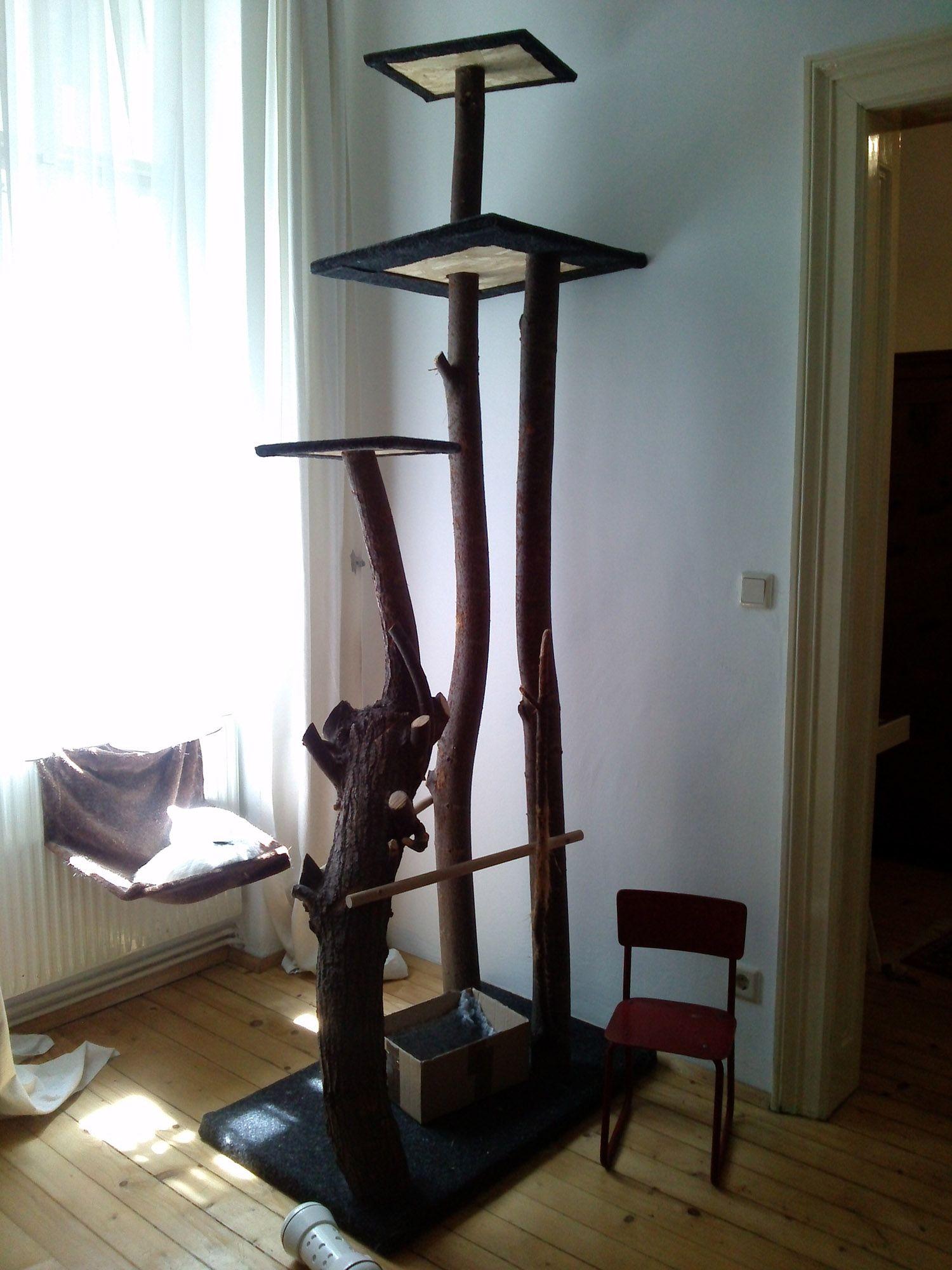 kratzbaum wohnung cat tree cats und home decor. Black Bedroom Furniture Sets. Home Design Ideas