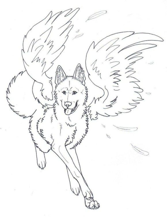 Winged Wolf Angel Coloring Pages 00 Pinterest Wolf, Angel and - copy lsu tigers coloring pages