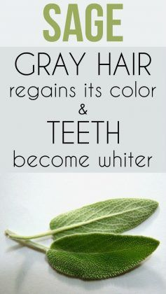 Sage – Gray Hair Regains Its Color and Teeth Become Whiter #naturalcures