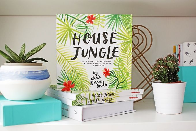 House Jungle A Guide To Becoming A Successful Indoor Gardener