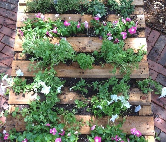 Herb Garden Ideas Small Design