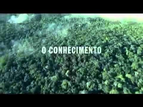 """""""Obstáculos"""", da F/Nazca para Futura - YouTube"""