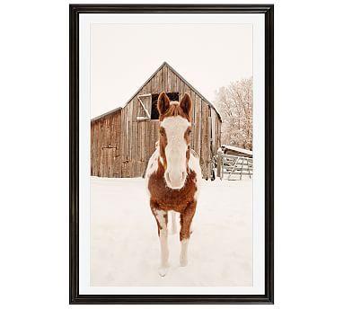 Barn Horse In Winter Framed Print by Jennifer Meyers, 16x20\