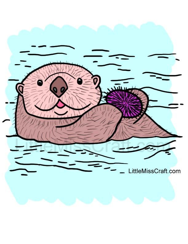 sea otter and sea urchin coloring page