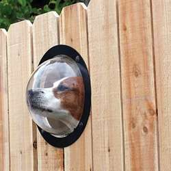 The PetPeek Window Lets Your Cat or Dog Discover the World Outside....REALLY???