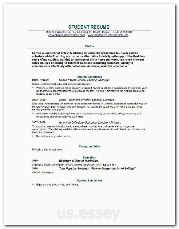 essay on company, sample literary analysis paper, personal - freelance writer resume