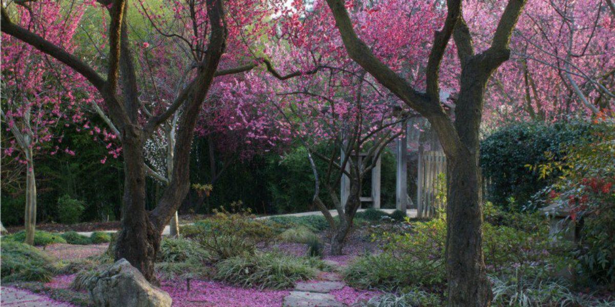 Shinzen Friendship Garden Weddings | Get Prices for Central Valley ...