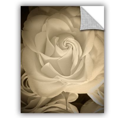 Artwall Judy Stalus Remembrance Removable Wall Decal Wayfair Floral Prints Art Rose Wall Art White Rose Flower