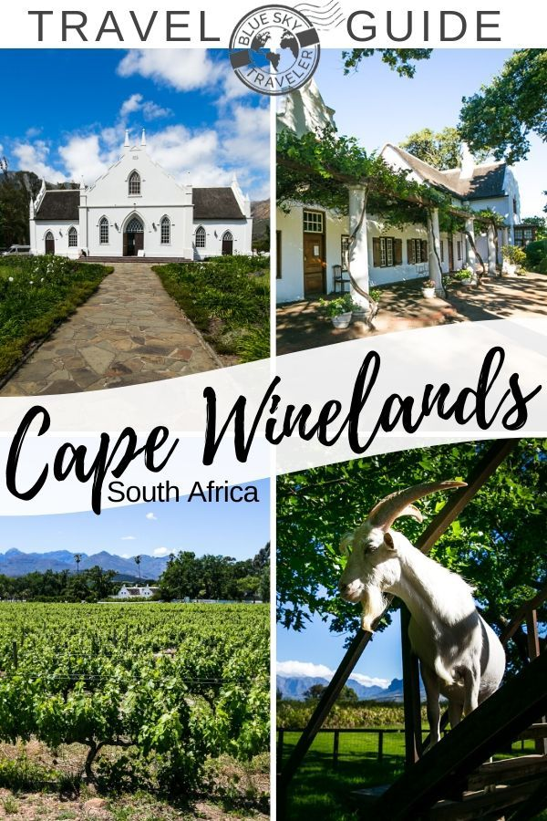 South Africa's Winelands, Enjoy a day of wine tasting, gourmet meals, art and more in Stellenbosch, Franschhoek or Paarl just 45 minutes inland from Cape Town. #SouthAfrica #CapeTown #Wineries #Wine #CapeWinelands