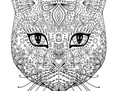 målarbok för vuxna katter