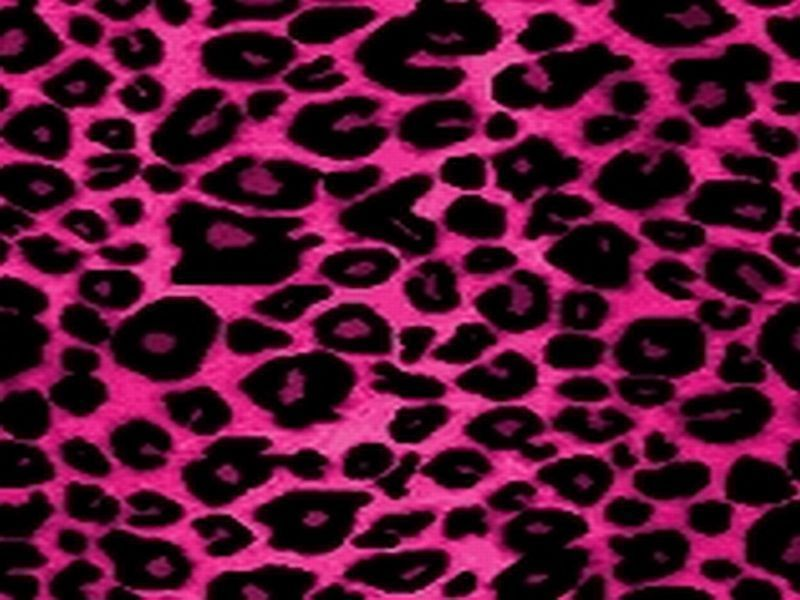 Hot pink glitter background pink wallpapers and pink - Pink animal print wallpaper ...