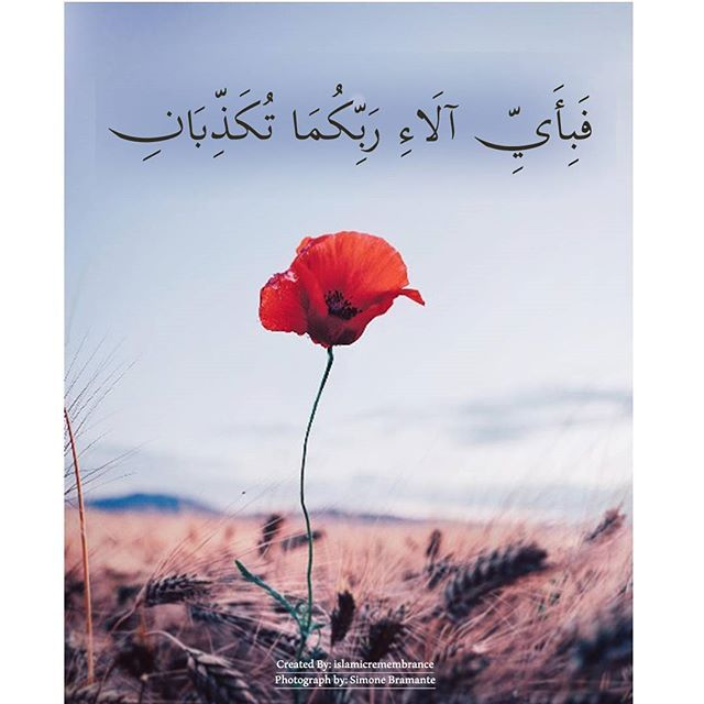Translation So Which Of The Favours Of Your Lord Will You Deny