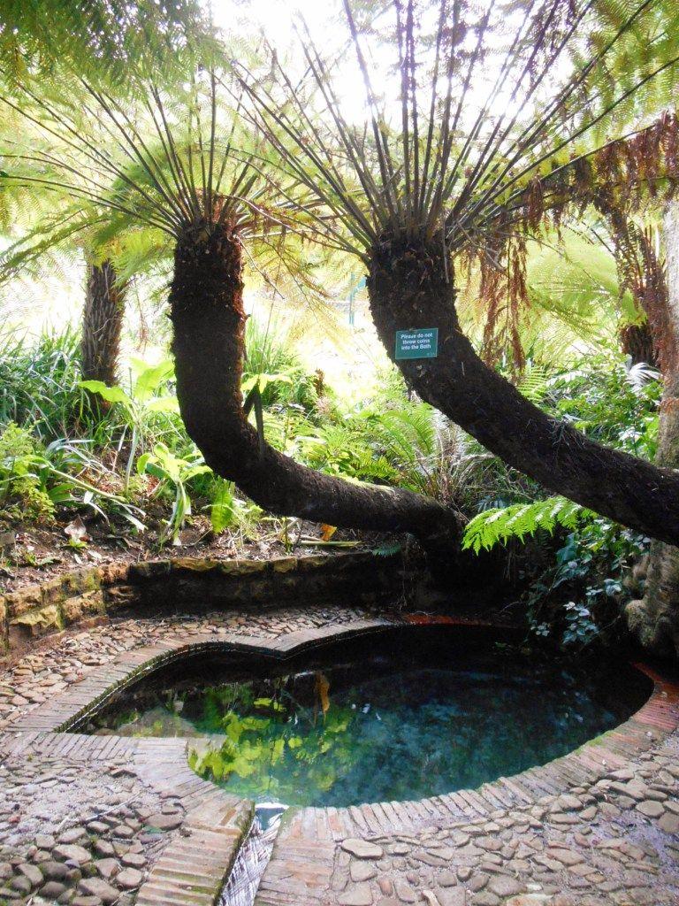 Garden Route Package Tours Savenues Com