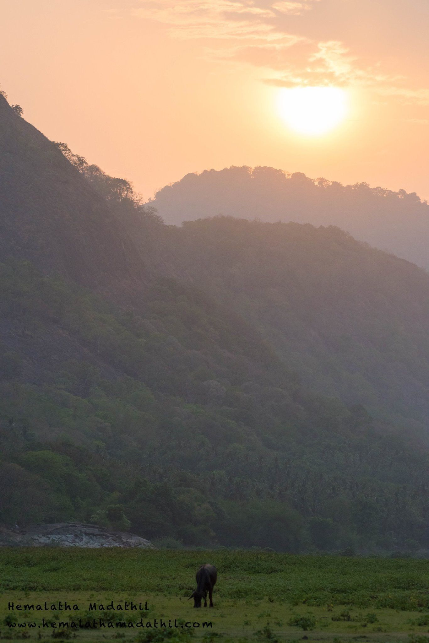 Pin By Hemalatha Madathil On Photographic Passion Nature Natural Landmarks Outdoor