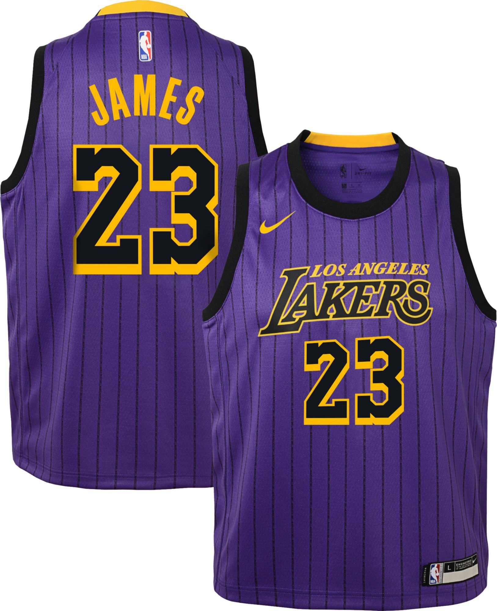 pretty nice 6c436 ec01e Nike Youth Los Angeles Lakers LeBron James Dri-FIT Purple ...
