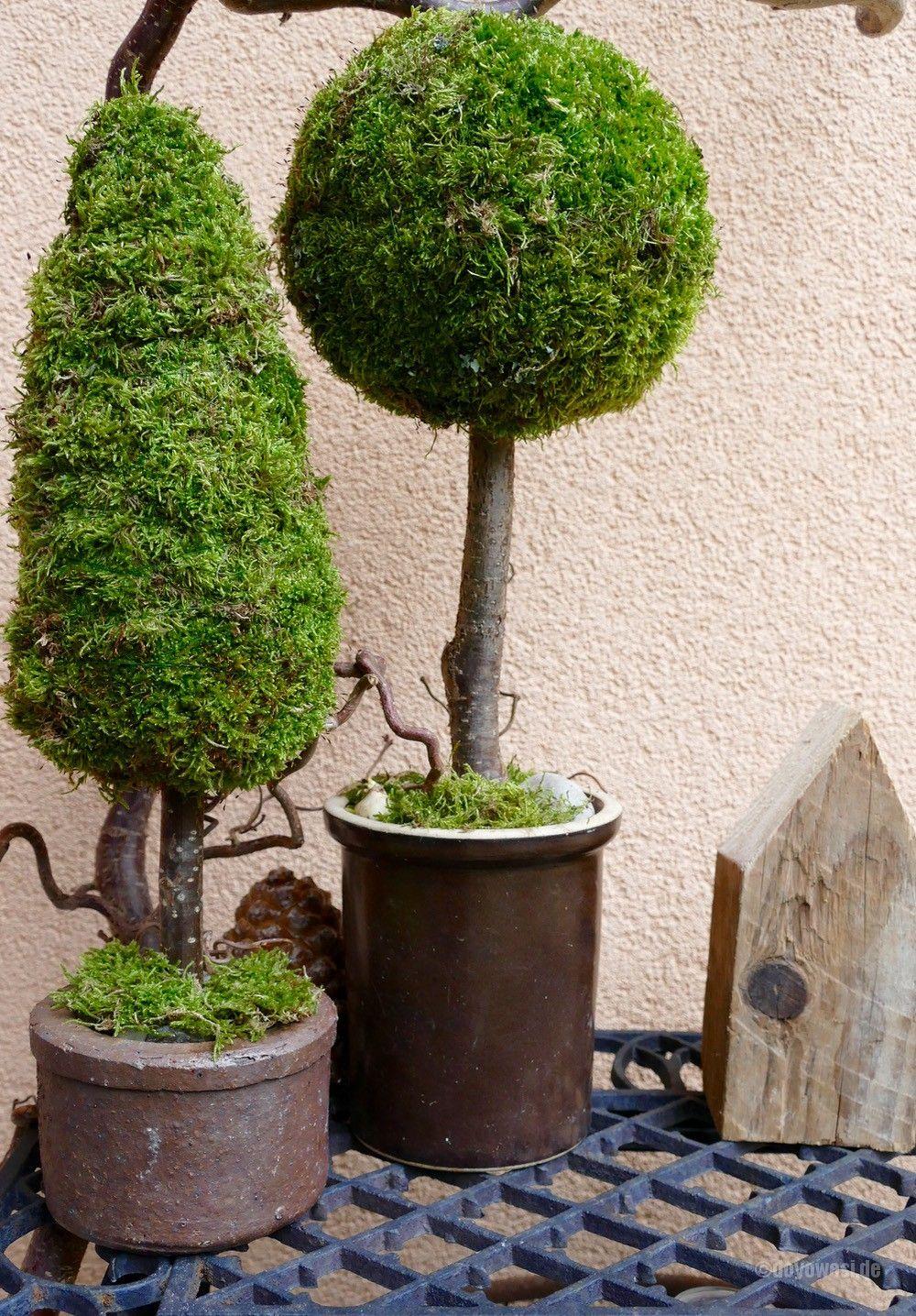 Bäume aus Moos - DIY #herbstdekoeingangsbereich