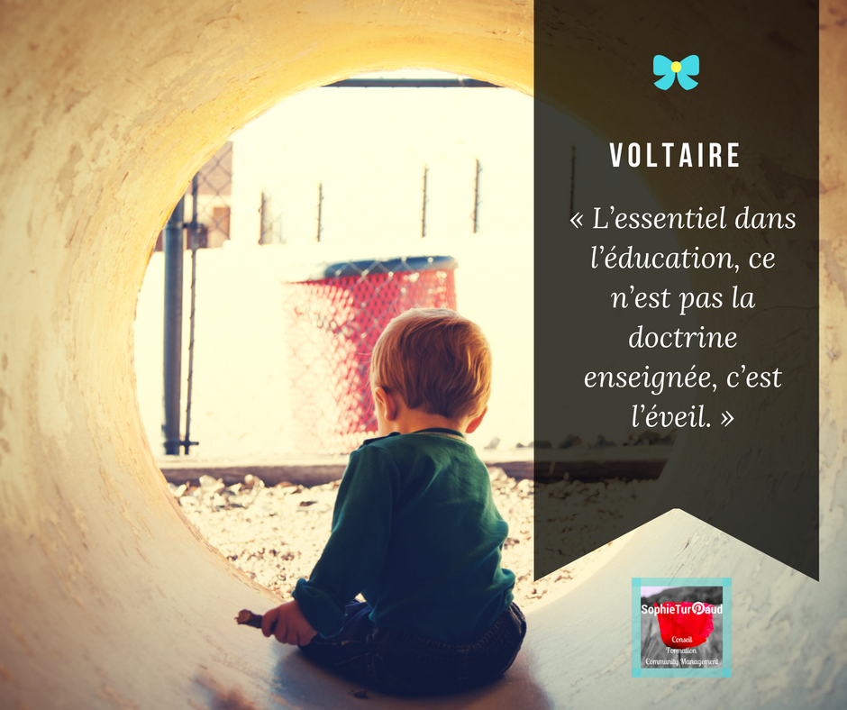 Citation De Voltaire L Education Citations Voltaire Education Enseignement