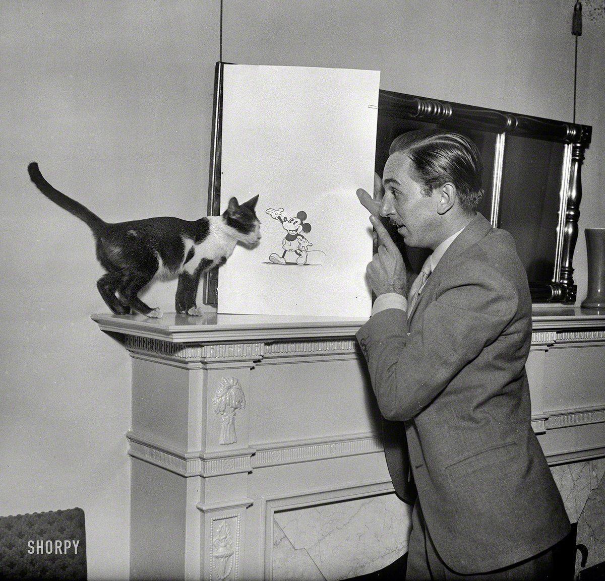 Walt Disney Mickey Mouse And Cat Personajes Historicos Amantes De Los Gatos Gatos